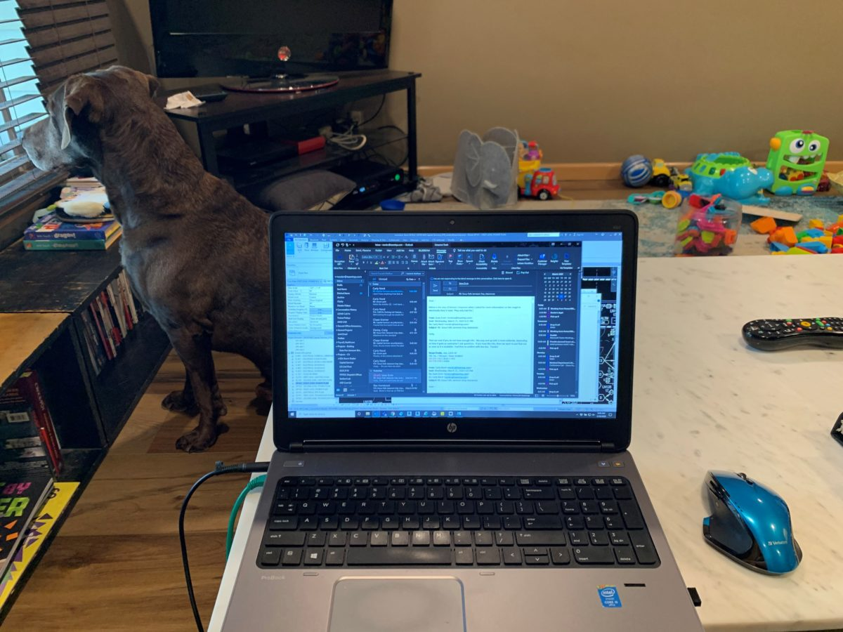 Working Remotely with Carly Nord